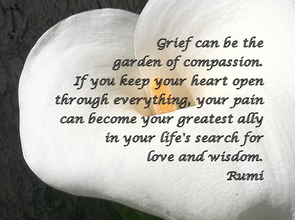 Grief can be the garden of compassion. If you keep your heart open through everything, your pain can become your greatest ally in your life's search for love and wisdom. -Rumi