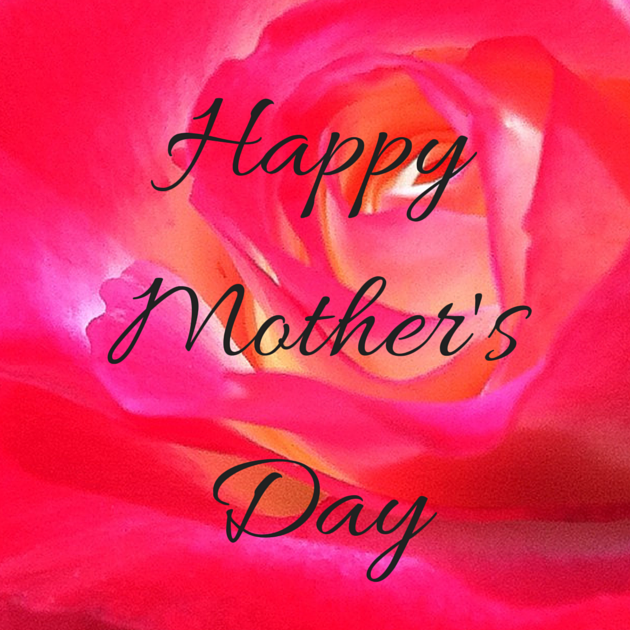 Happy Mother's Day with Rose in Background